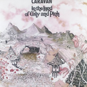 Caravan Vinyl Record Grey and Pink