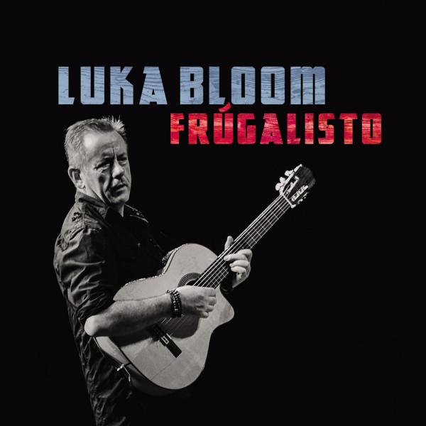 Luka Bloom Frugalisto Vinyl Record Cork Ireland